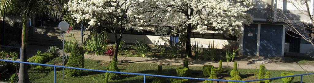 Jardim Departamento de Química  - créditos Sonia Biaggio